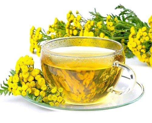 Прием водных настоев и отваров, приготовленных из цветков, способствует улучшению аппетита и пищеварения