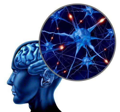 Вызвать рассеянный склероз могут аутоиммунные патологии, хронические заболевания сосудов, инфекционные болезни и нарушения психоэмоционального баланса