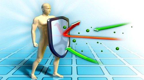 Имбирь стимулирует имунную защиту