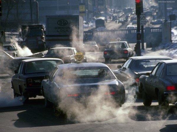 Загрязненность воздуха в городах может стать толчком к развитию аллергии