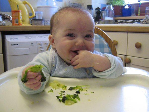 Врач рекомендует заводить пищевой журнал для ребенка, в котором необходимо записывать продукты для малыша и отмечать его реакцию после их употребления