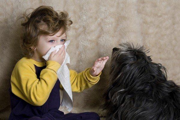 Причиной аллергии может быть шерсть домашних животных