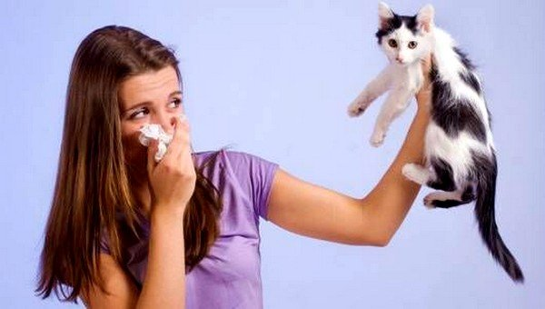 Аллергия на животных - одна из самых распространенных
