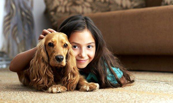 Второй по распространённости считается аллергическая реакция на животных