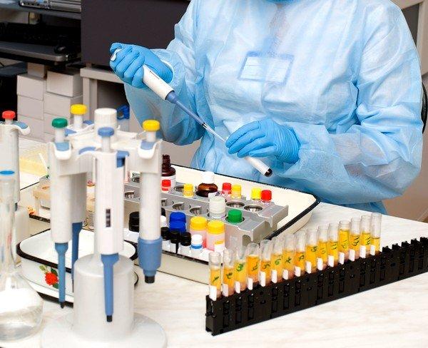 Иммуноглобулины Е являются особыми молекулами человеческой иммунной системы