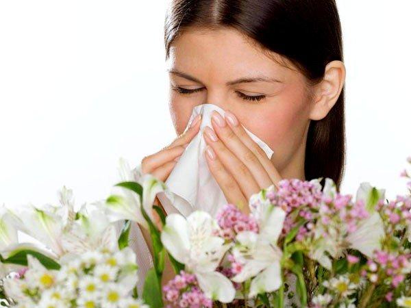 Где лечить аллергию? фото