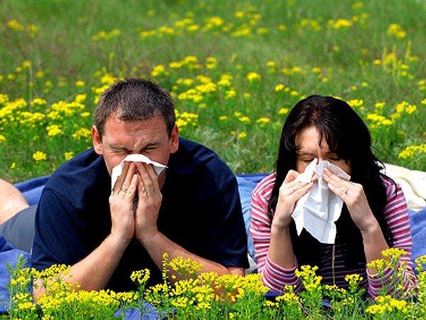 Как можно лечить аллергию народными средствами? фото