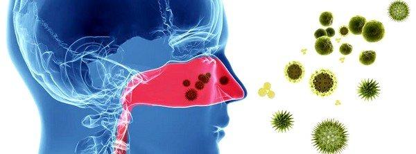 Почему появляется аллергия? фото