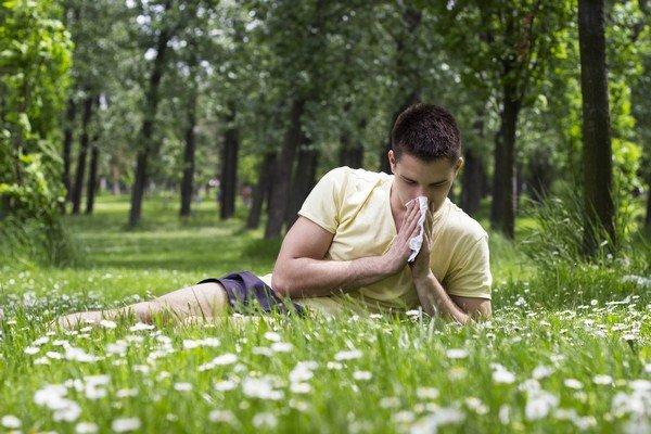 Пыльца растений может вызывать аллергию