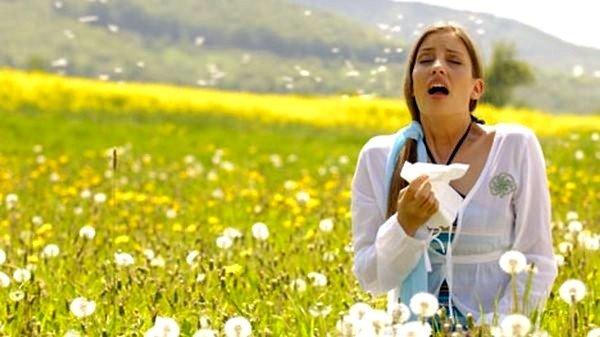 Пыльца в сезон цветения растений может вызывать аллергию