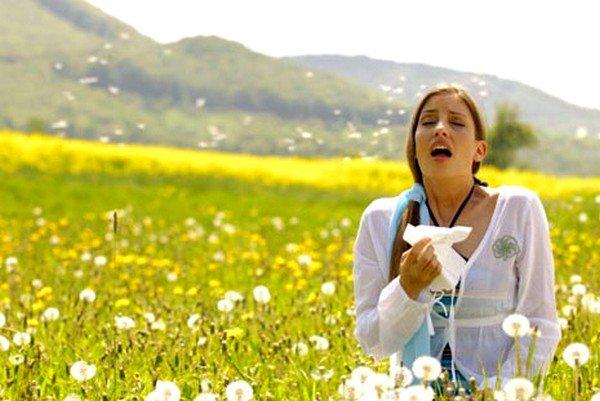 Аллергия на пыльцу - самый распространенный вид перекрестной аллергии