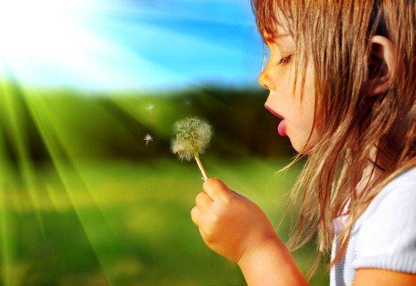 К аллергии с поднятием температуры может приводить растительная пыльца