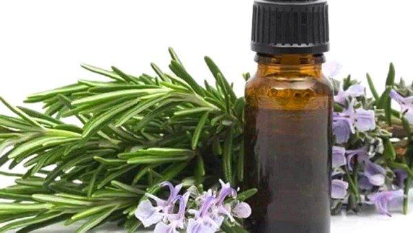 Розмариновое масло поможет снять аллергию