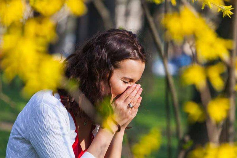Перечень препаратов, эффективных при сезонной аллергии фото