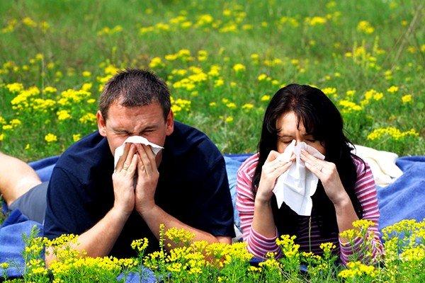 Сезонная аллергия: симптомы и лечение фото