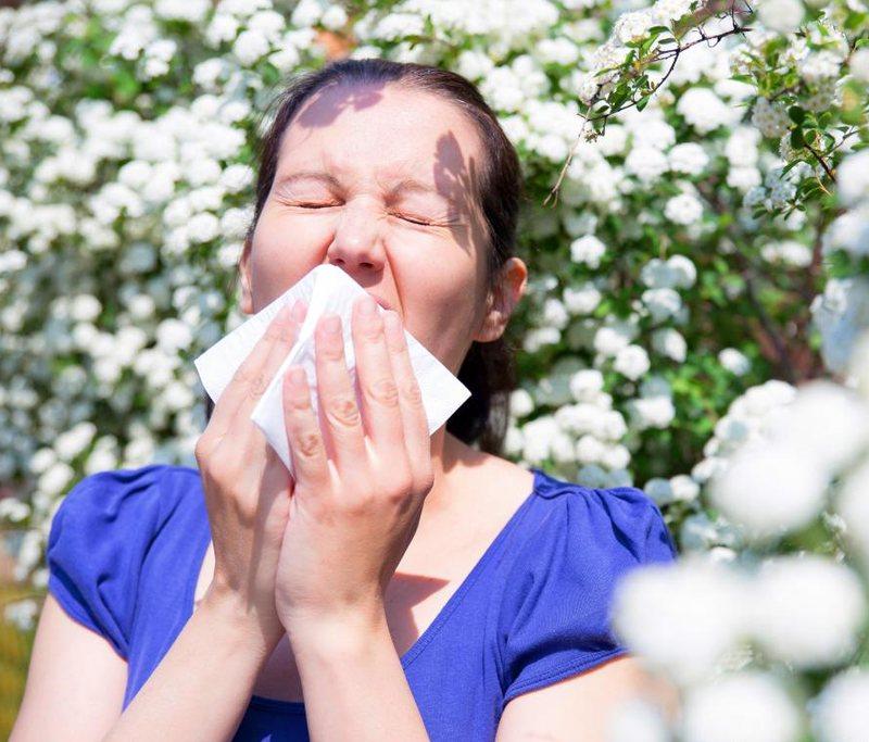 Признаки аллергической реакции: частое чихание, заложенность носа, покраснение глаз, заложенность в ушах
