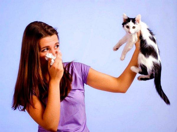 Аллергия на домашних животных является одним из наиболее распространённых видов аллергической реакции и составляет около 17% от общего числа заболеваний