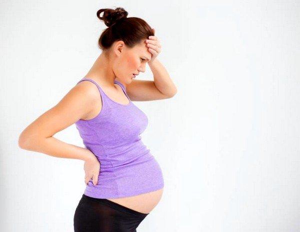 Лекарственные травы также имеют свои противопоказания и могут быть вредными в период беременности