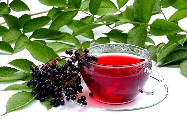 Заварив чай из листьев черной смородины, можно восстановить температурный режим тела
