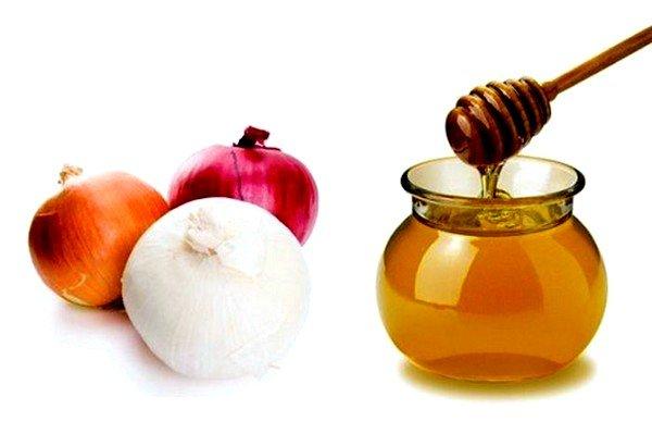 Измельченный лук и натуральный мёд помогают при кашле