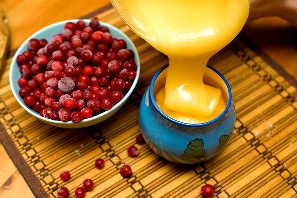 Мёд с брусникой эффективен при кашле