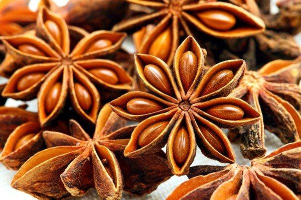 Плоды аниса обыкновенного содержат эфирное масло, которое обладает целительными свойствами для органов дыхания