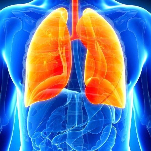 Симптомы пневмонии довольно похожи на признаки очагового туберкулёза и также длятся долго