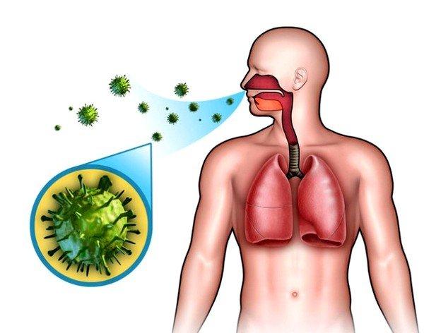 Причиной болезни могут быть бактерии