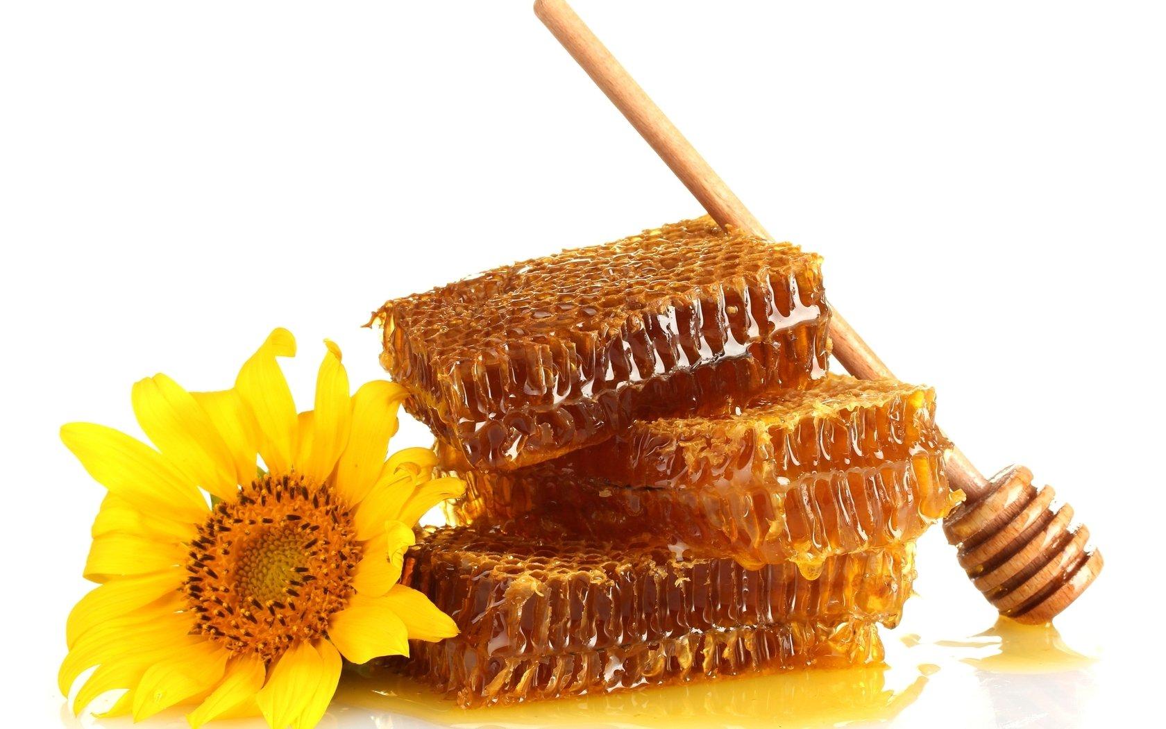Мед можно использовать при растирании от кашля