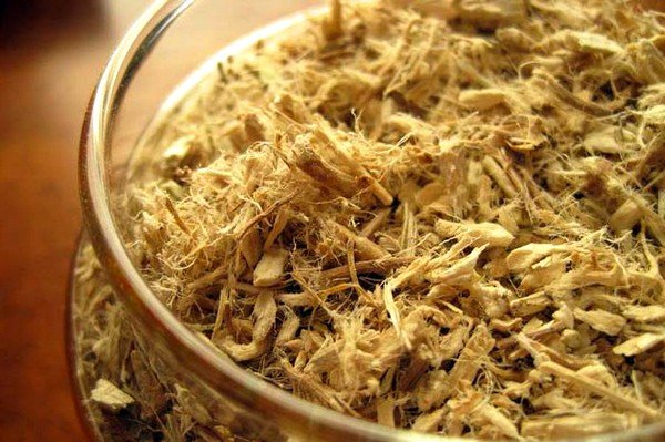 Настойка корня алтея может применяться при кашле