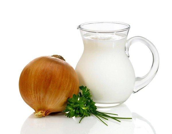 Молоко с луком прекрасно подходит для лечения сухого непродуктивного кашля
