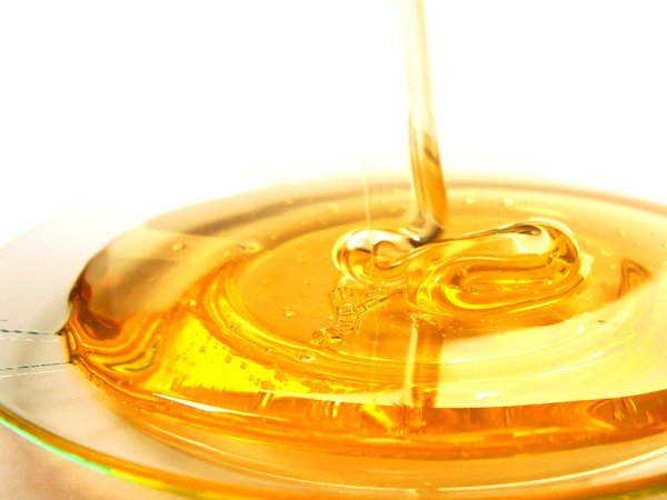 Бараний жир хорошо сочетается с медом