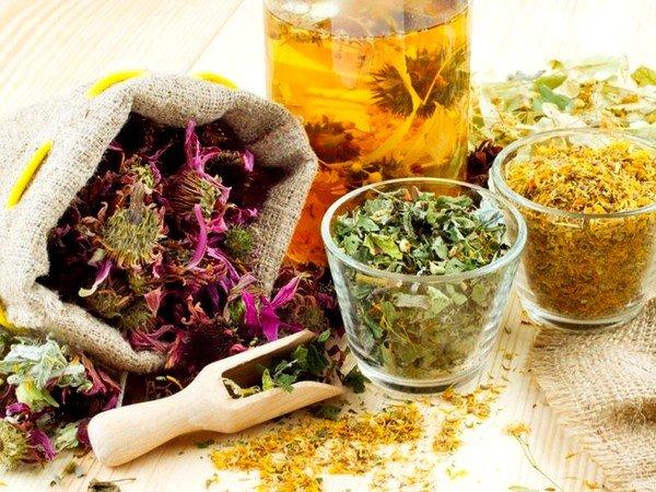 Отвары из травяных сборов эффективны при кашле