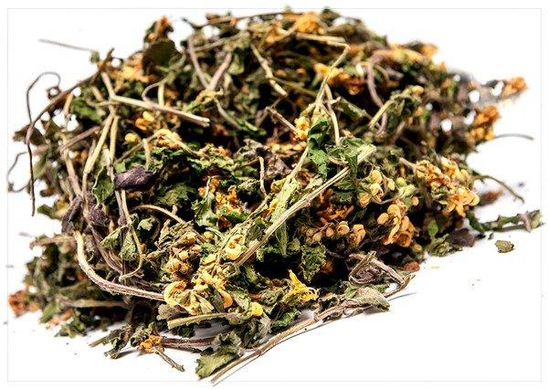 При воспалении бронхолёгочного тракта эффективны различные сборы лекарственных трав