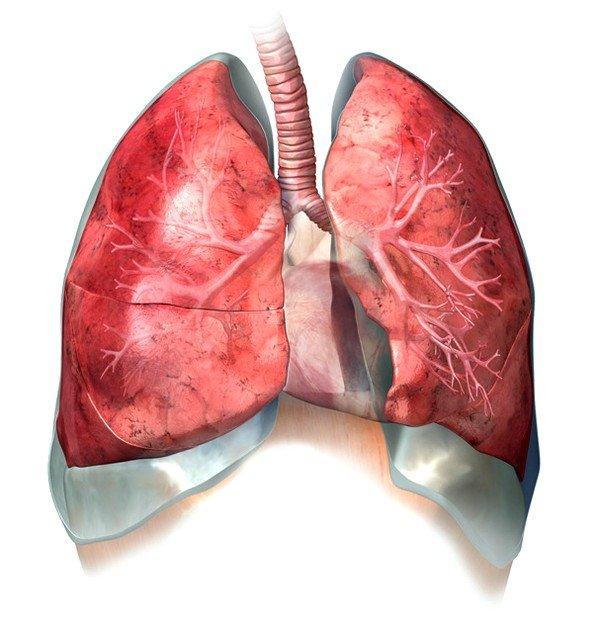 Воспаление плевральной полости  может быть причиной болей