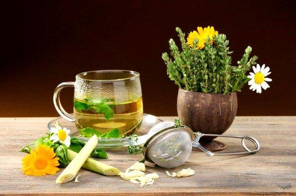 Отвары лекарственных трав эффективны при лечении неврологического кашля