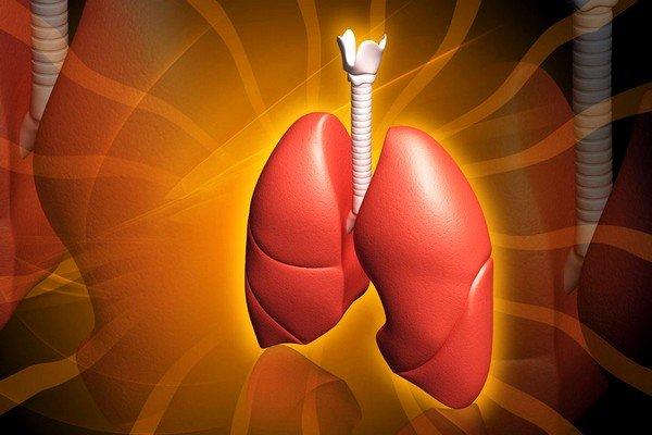 Бараньим жиром у взрослых лечат заболевания лёгких