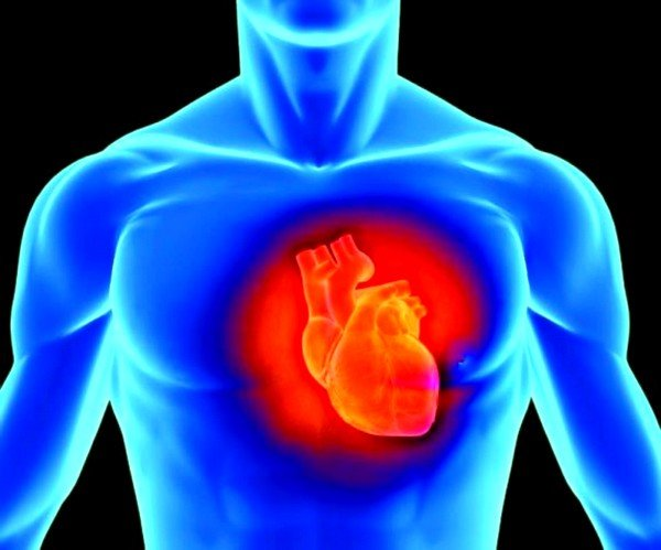 Нарушение кровообращения вызывает перегрузку правого желудочка, обусловливая его гипертрофию и дилатацию