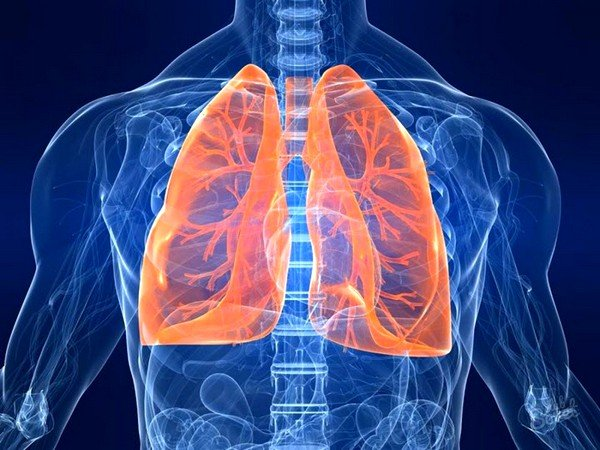 Бронхит – это воспалительный процесс слизистой оболочки, выстилающей трахею, орган воздухоносного тракта, стенок бронхов