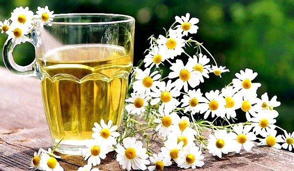 Успокоить желудочный кашель можно при помощи отваров из лекарственных трав