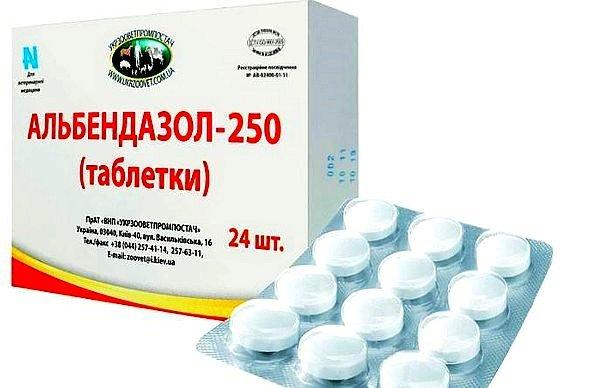 Альбендазол – антигельминтный препарат, который обеспечивает угнетение выработки клеточного табулина, в результате чего у ленточного глиста приостанавливаются процессы жизнедеятельности