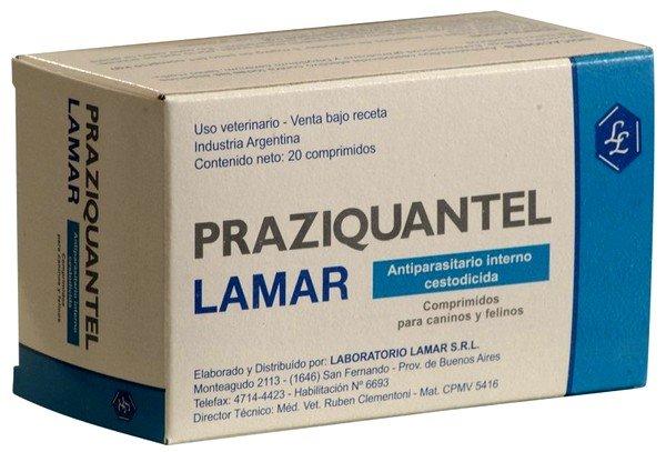 Празиквантел – эффективное средство лечения, входящее в перечень жизненно важных и необходимых лекарственных препаратов
