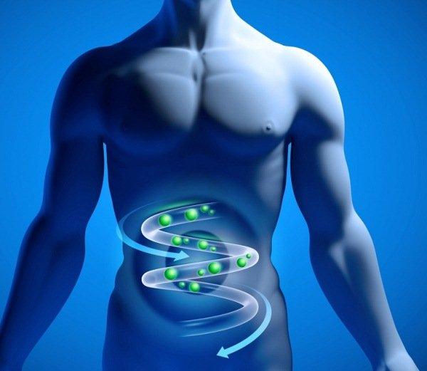 Даже если в организм попала дизентерийная амеба, заболевание развивается только при воздействии нескольких благоприятных для нее факторов