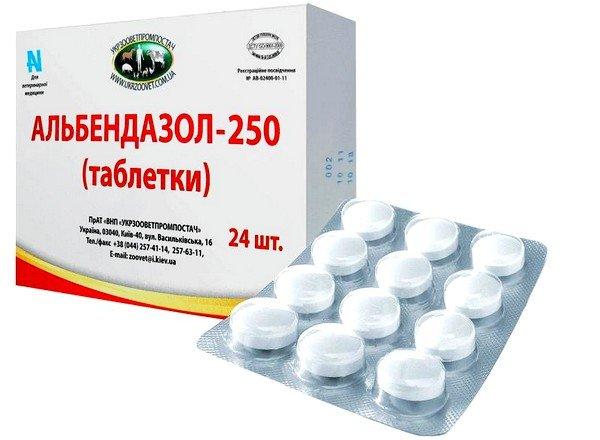 При трихоцефалёзе Альбендазол назначают в количестве 0,4 г в день однократно после приёма пищи