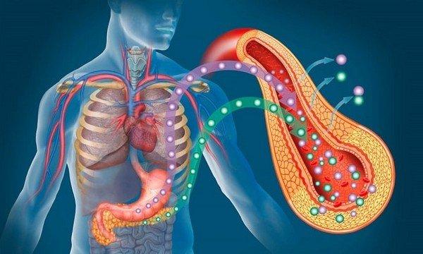 Алкогольный панкреатит: основные симптомы, диагностические мероприятия и лечение фото