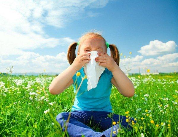 На что может быть аллергия в августе фото