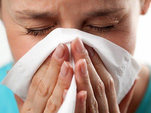 Симптомы аллергии на амброзию