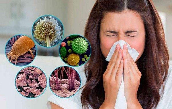 Возбудители аллергии